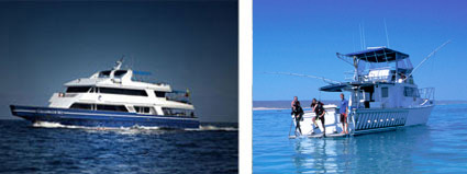 liveaboard-vs-island-based2